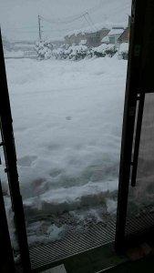雪融けていざ