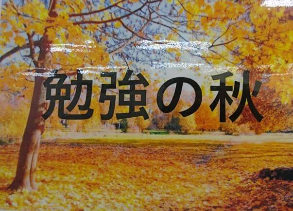 いきなり、秋の気配。